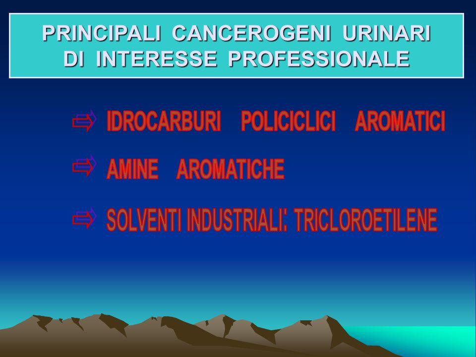 PRINCIPALI CANCEROGENI URINARI DI INTERESSE PROFESSIONALE