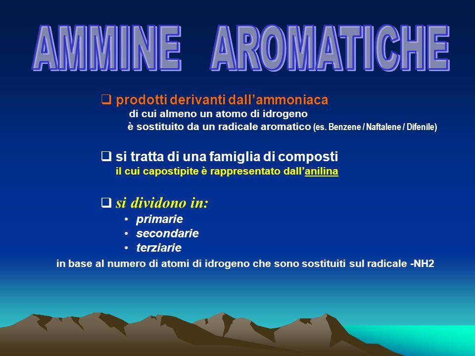 AMMINE AROMATICHE prodotti derivanti dall'ammoniaca