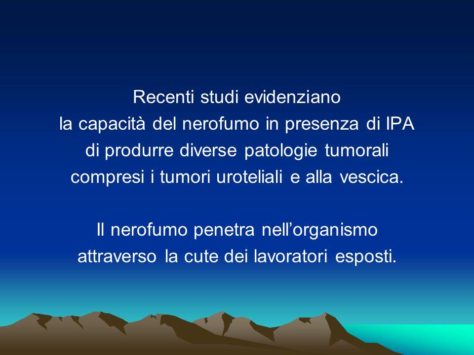 Recenti studi evidenziano la capacità del nerofumo in presenza di IPA