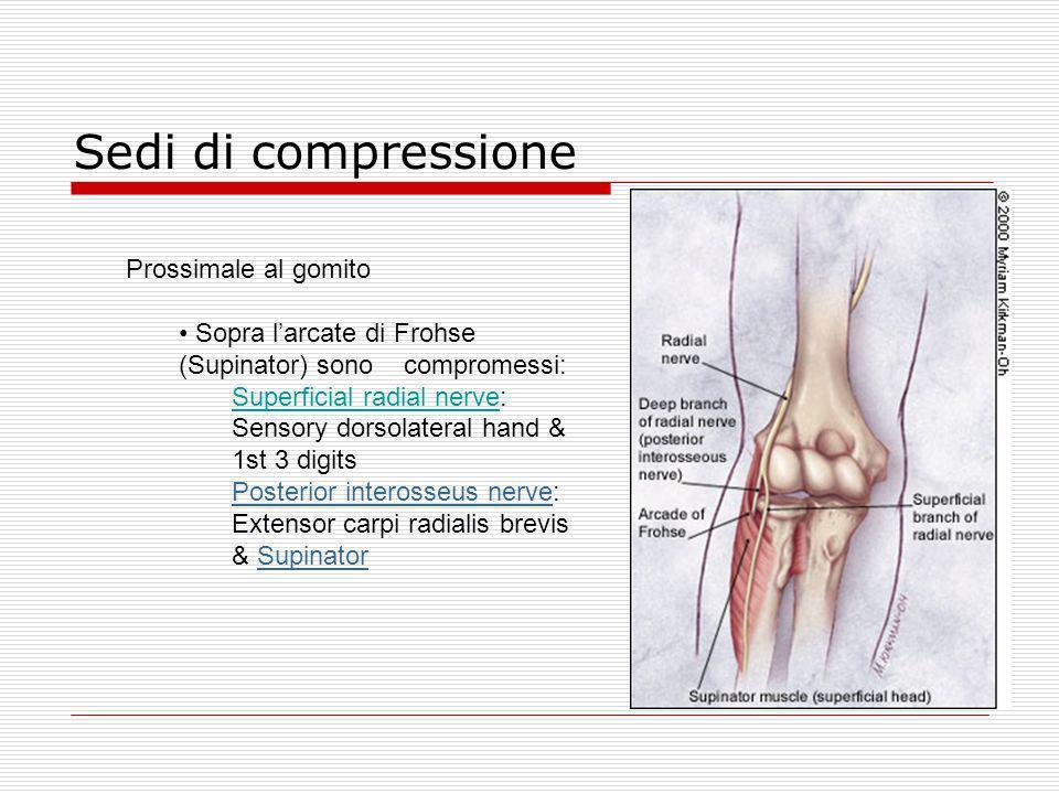 Sedi di compressione Prossimale al gomito