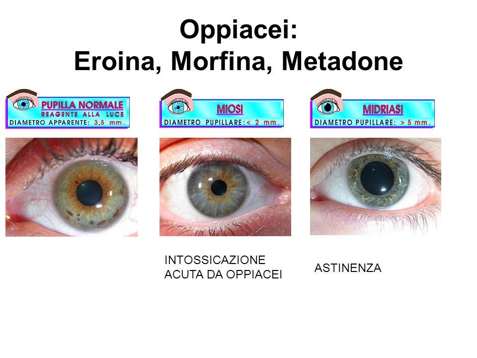 Oppiacei: Eroina, Morfina, Metadone