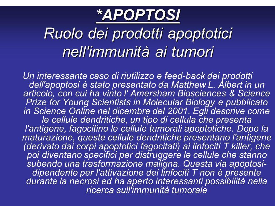 *APOPTOSI Ruolo dei prodotti apoptotici nell immunità ai tumori