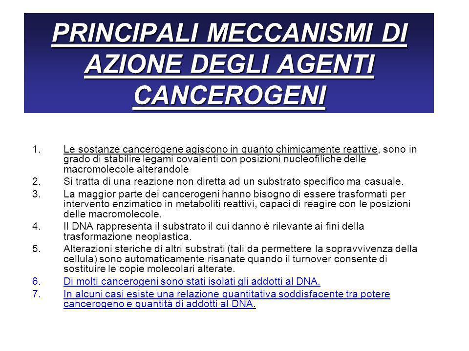 PRINCIPALI MECCANISMI DI AZIONE DEGLI AGENTI CANCEROGENI