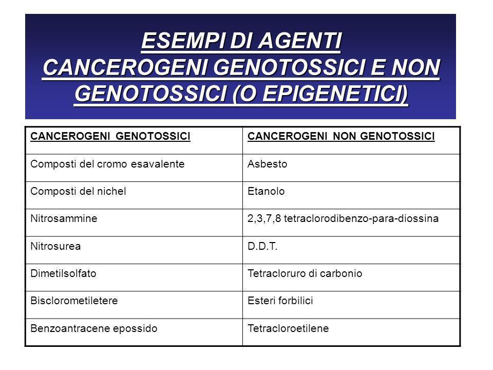 ESEMPI DI AGENTI CANCEROGENI GENOTOSSICI E NON GENOTOSSICI (O EPIGENETICI)