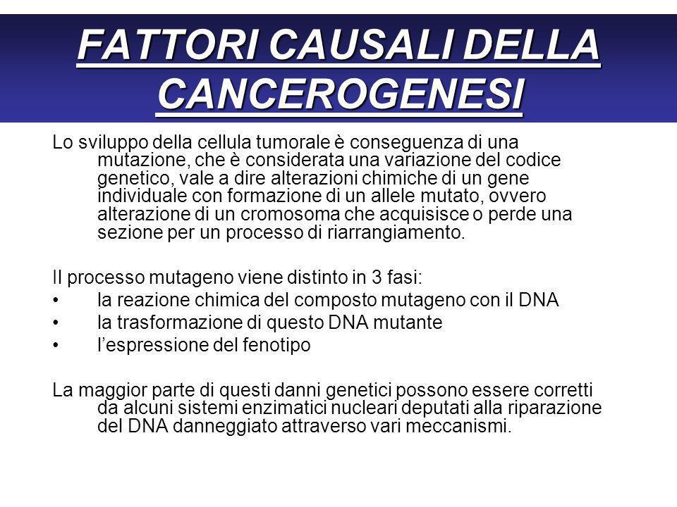 FATTORI CAUSALI DELLA CANCEROGENESI