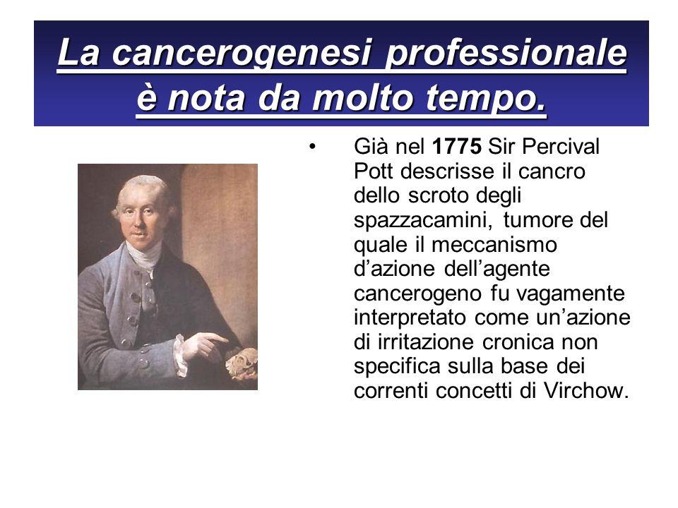 La cancerogenesi professionale è nota da molto tempo.