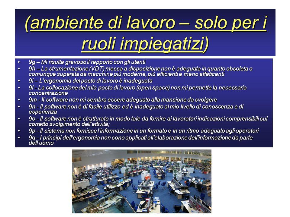 (ambiente di lavoro – solo per i ruoli impiegatizi)