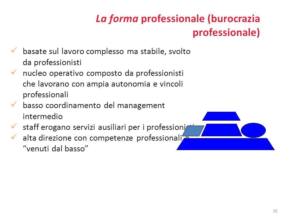 La forma professionale (burocrazia professionale)