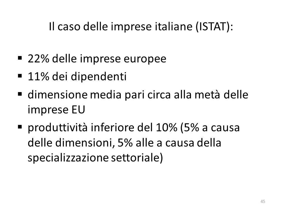 Il caso delle imprese italiane (ISTAT):