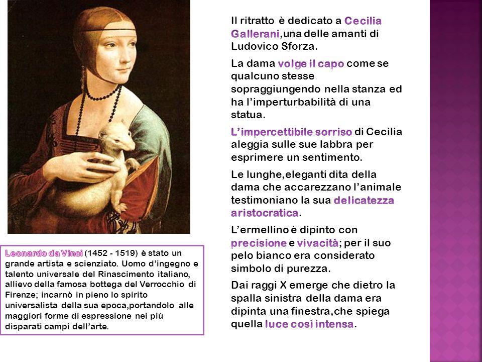 Il ritratto è dedicato a Cecilia Gallerani,una delle amanti di Ludovico Sforza. La dama volge il capo come se qualcuno stesse sopraggiungendo nella stanza ed ha l'imperturbabilità di una statua. L'impercettibile sorriso di Cecilia aleggia sulle sue labbra per esprimere un sentimento. Le lunghe,eleganti dita della dama che accarezzano l'animale testimoniano la sua delicatezza aristocratica. L'ermellino è dipinto con precisione e vivacità; per il suo pelo bianco era considerato simbolo di purezza. Dai raggi X emerge che dietro la spalla sinistra della dama era dipinta una finestra,che spiega quella luce così intensa.