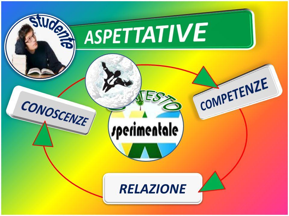 studente ASPETTATIVE CONTESTO COMPETENZE CONOSCENZE RELAZIONE