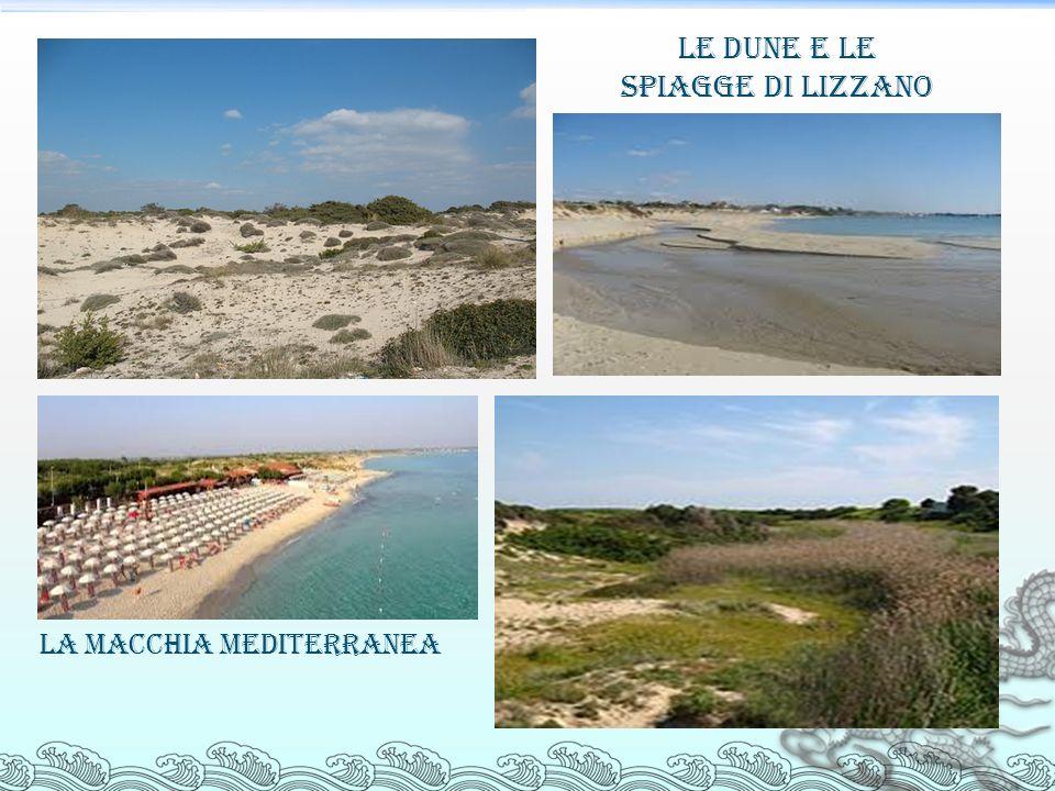 Le dune e le spiagge di Lizzano