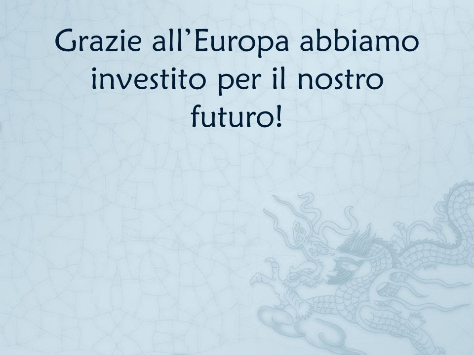 Grazie all'Europa abbiamo investito per il nostro futuro!