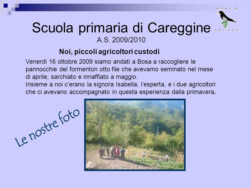Scuola primaria di Careggine A.S. 2009/2010