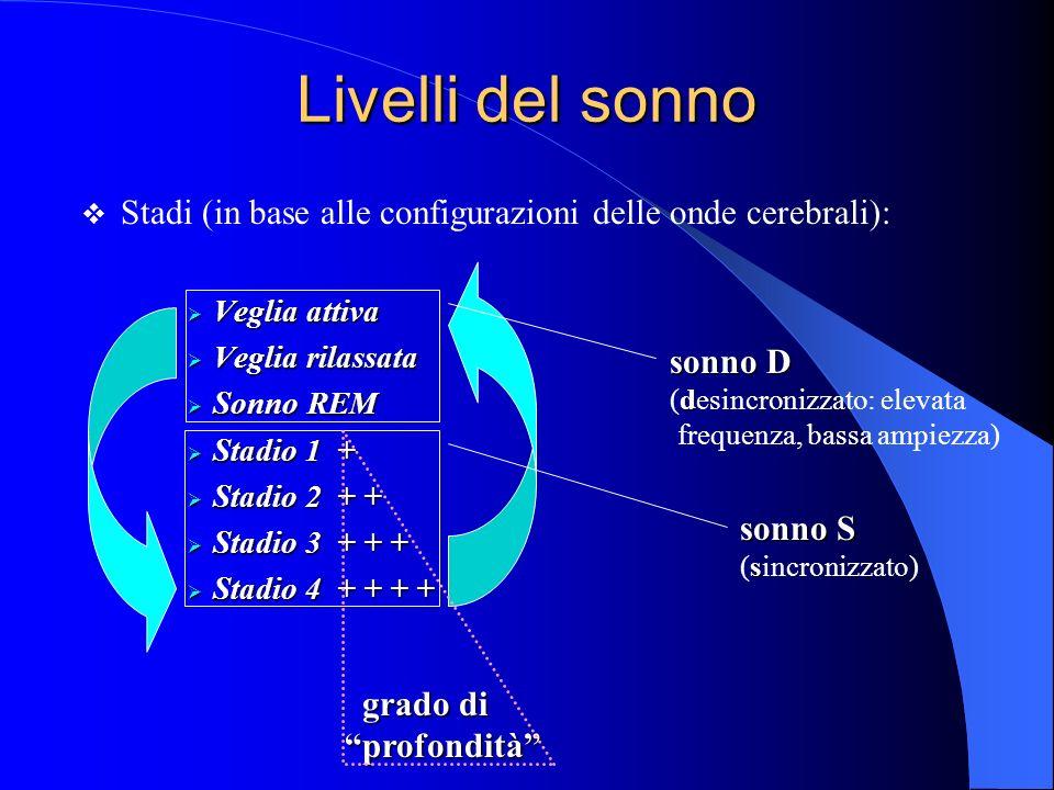 Livelli del sonno Stadi (in base alle configurazioni delle onde cerebrali): Veglia attiva. Veglia rilassata.