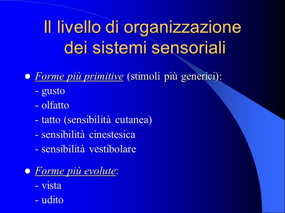 Il livello di organizzazione dei sistemi sensoriali