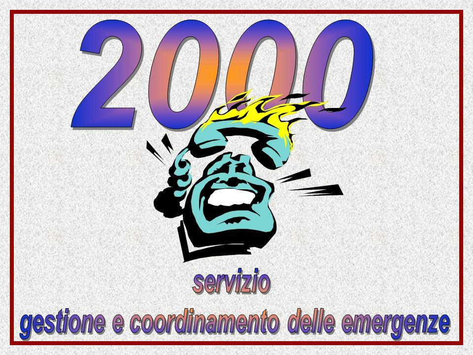 gestione e coordinamento delle emergenze