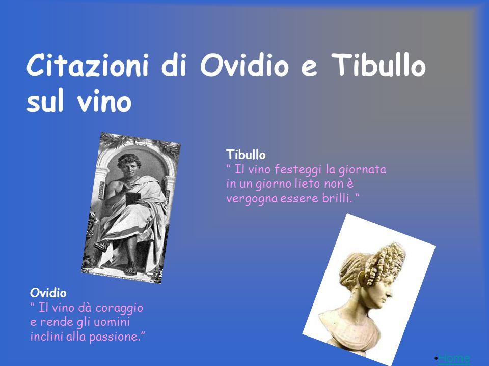 Citazioni di Ovidio e Tibullo sul vino