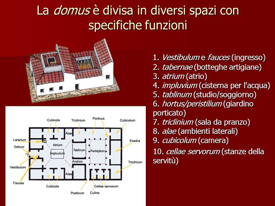 La domus è divisa in diversi spazi con specifiche funzioni
