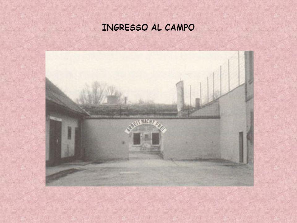 INGRESSO AL CAMPO