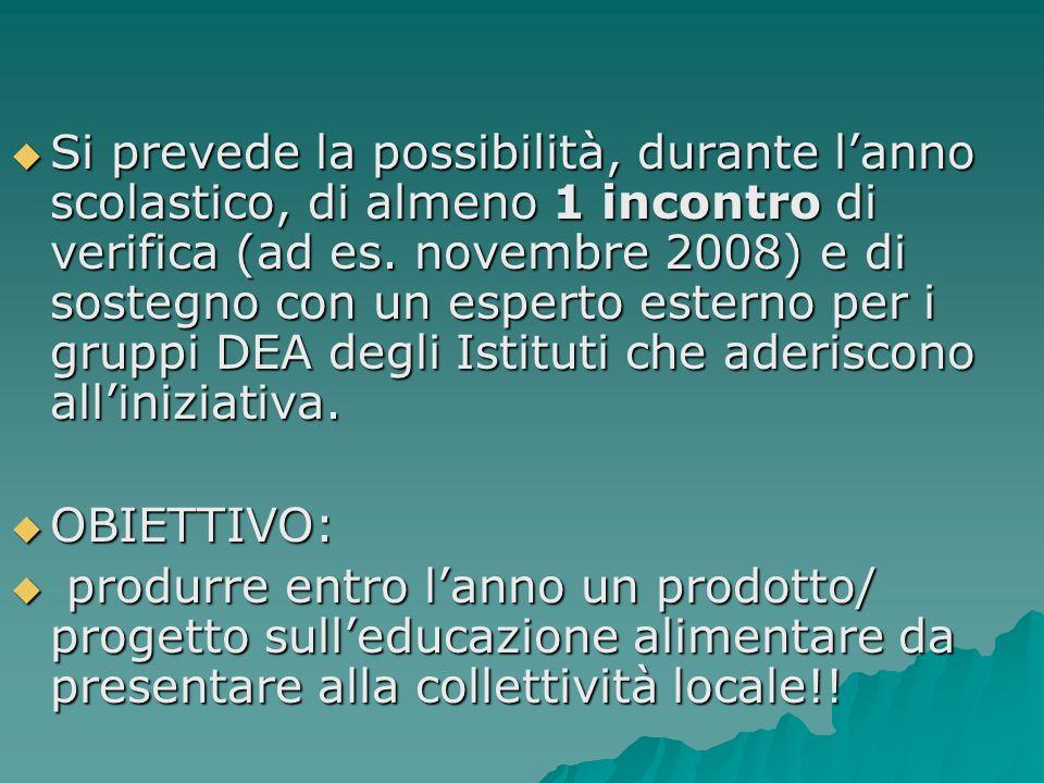 Si prevede la possibilità, durante l'anno scolastico, di almeno 1 incontro di verifica (ad es. novembre 2008) e di sostegno con un esperto esterno per i gruppi DEA degli Istituti che aderiscono all'iniziativa.