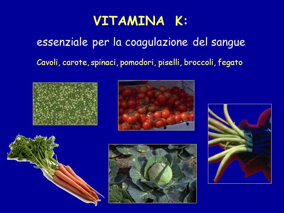 VITAMINA K: essenziale per la coagulazione del sangue