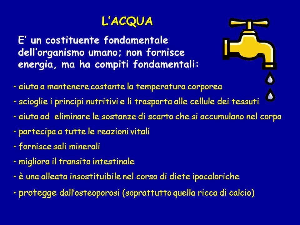 L'ACQUA E' un costituente fondamentale dell'organismo umano; non fornisce energia, ma ha compiti fondamentali: