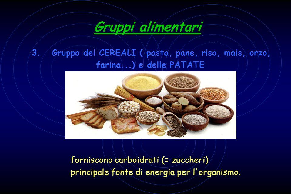 3. Gruppo dei CEREALI ( pasta, pane, riso, mais, orzo, farina