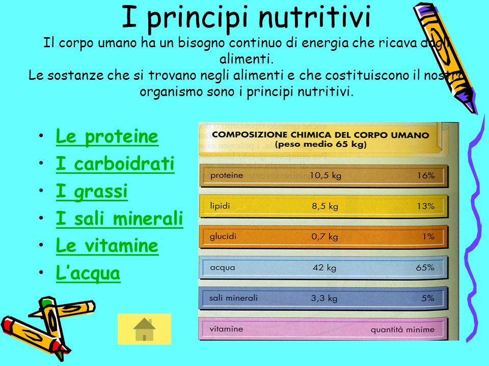 I principi nutritivi Il corpo umano ha un bisogno continuo di energia che ricava dagli alimenti. Le sostanze che si trovano negli alimenti e che costituiscono il nostro organismo sono i principi nutritivi.