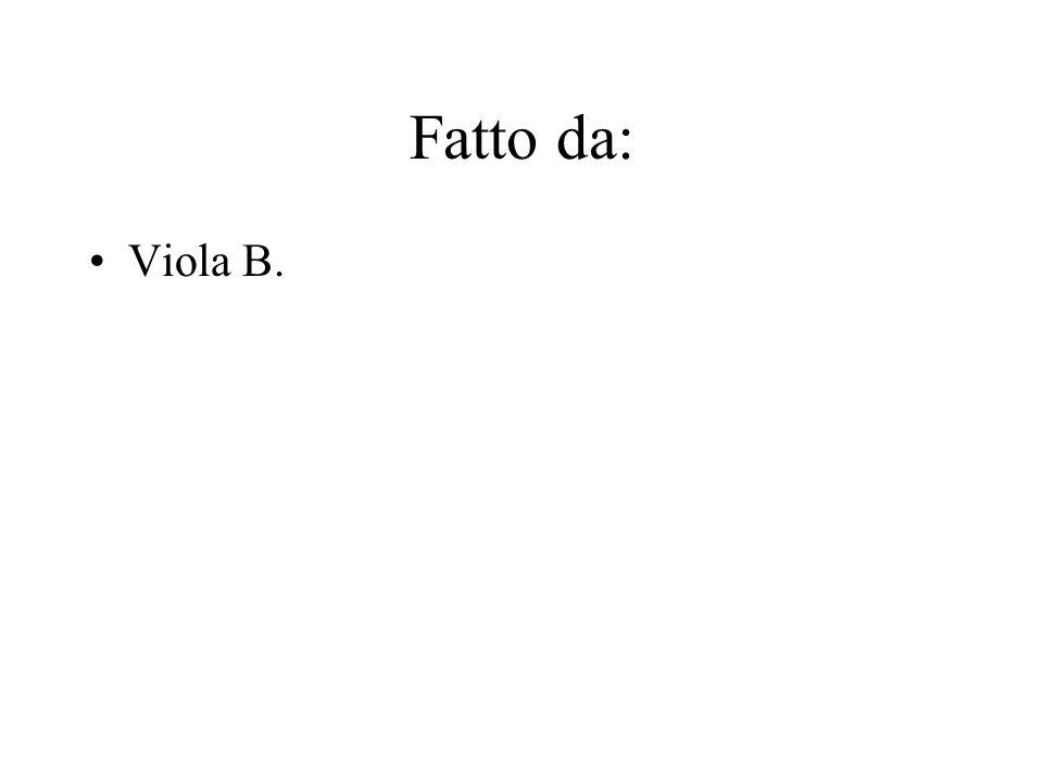 Fatto da: Viola B.