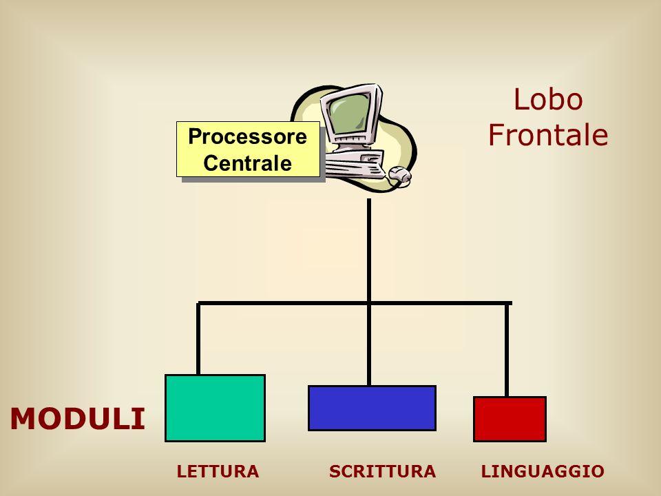 Lobo Frontale Processore Centrale MODULI LETTURA SCRITTURA LINGUAGGIO