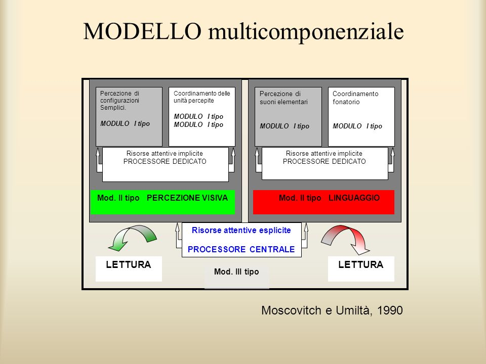 MODELLO multicomponenziale