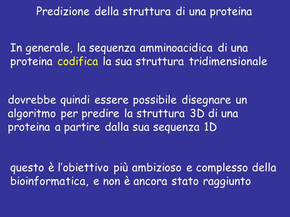 Predizione della struttura di una proteina