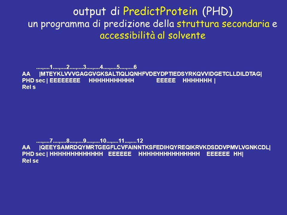 output di PredictProtein (PHD)