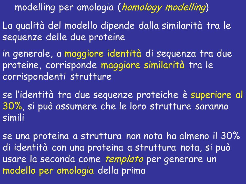 modelling per omologia (homology modelling)