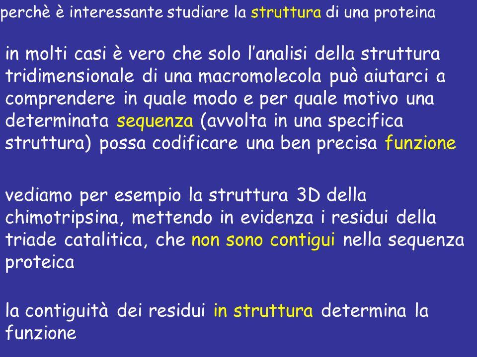 la contiguità dei residui in struttura determina la funzione