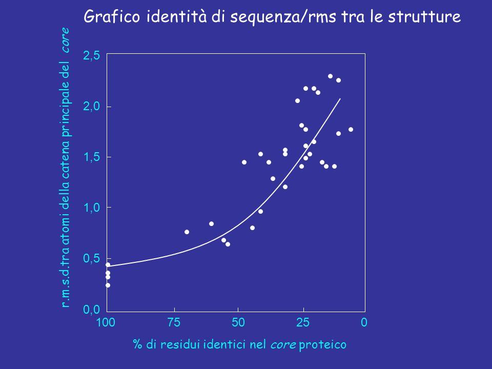 Grafico identità di sequenza/rms tra le strutture
