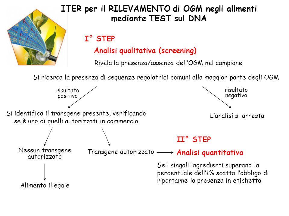 ITER per il RILEVAMENTO di OGM negli alimenti mediante TEST sul DNA