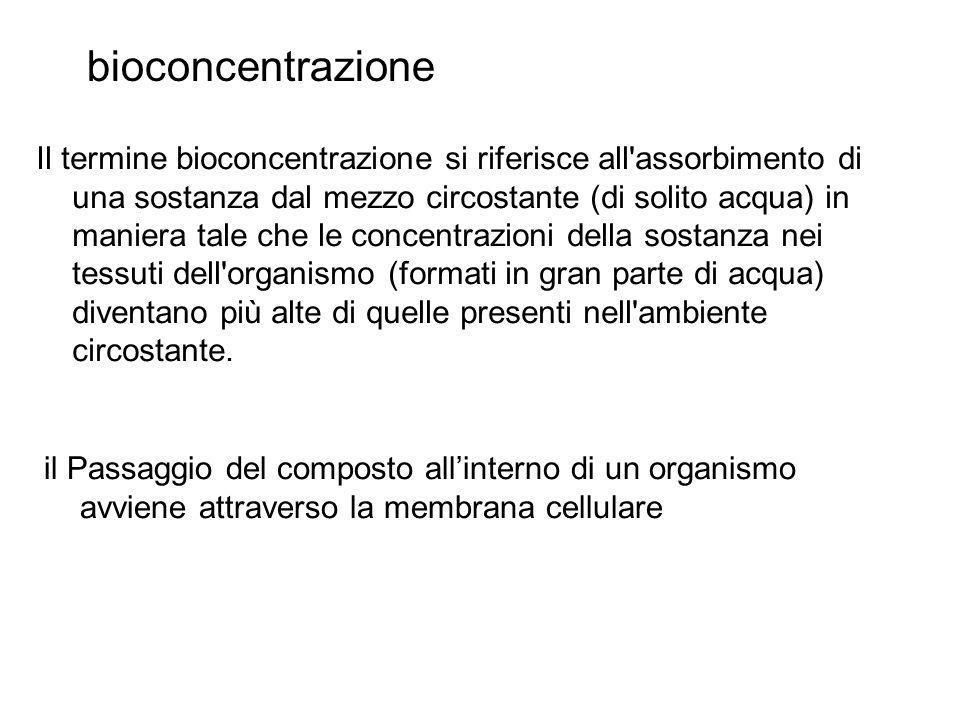 bioconcentrazione