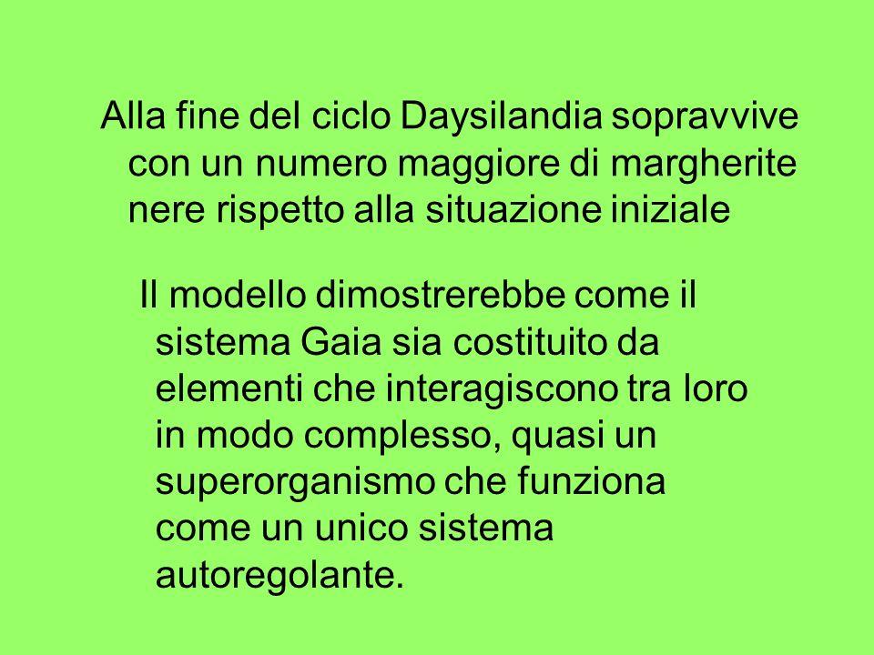 Alla fine del ciclo Daysilandia sopravvive con un numero maggiore di margherite nere rispetto alla situazione iniziale