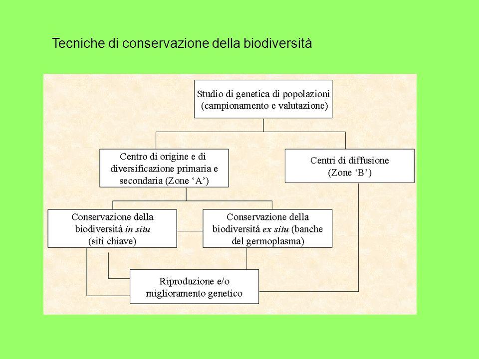 Tecniche di conservazione della biodiversità