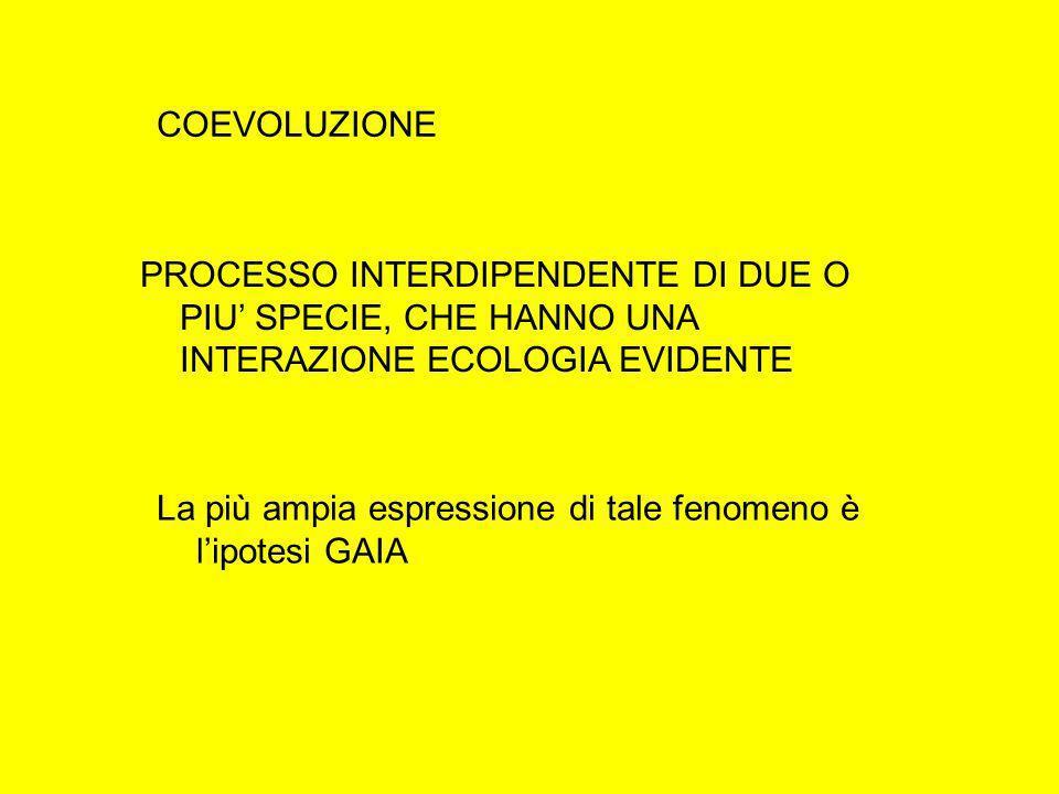 COEVOLUZIONE PROCESSO INTERDIPENDENTE DI DUE O PIU' SPECIE, CHE HANNO UNA INTERAZIONE ECOLOGIA EVIDENTE.