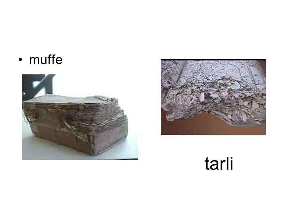 muffe tarli