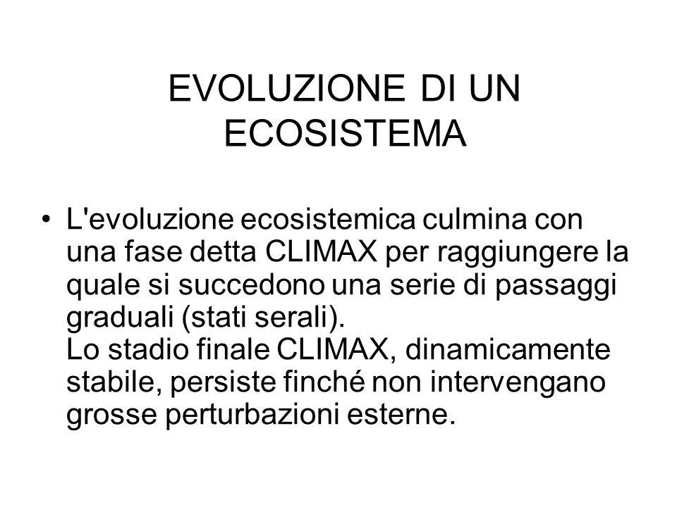 EVOLUZIONE DI UN ECOSISTEMA