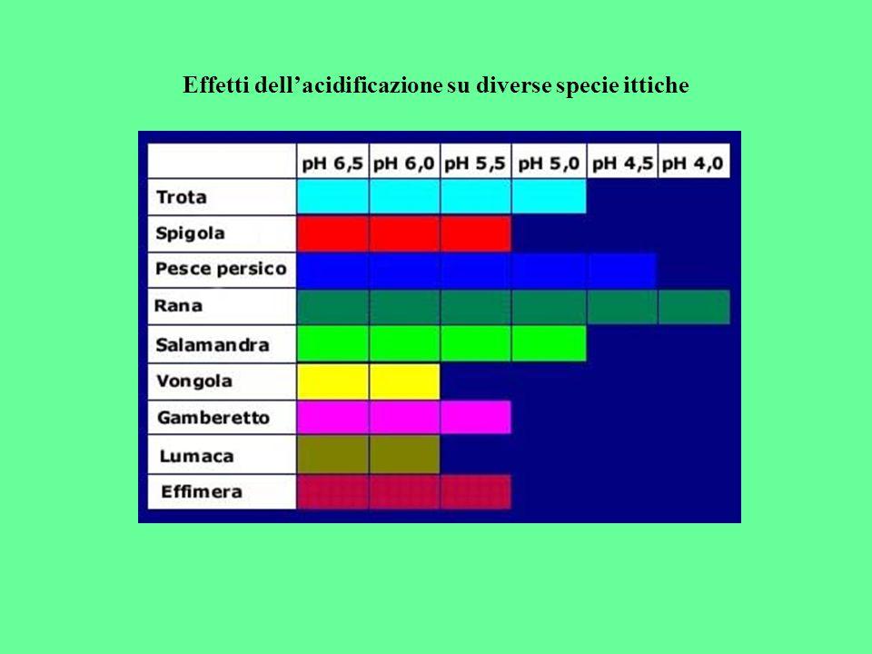 Effetti dell'acidificazione su diverse specie ittiche