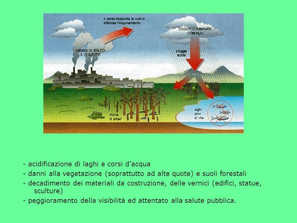 - acidificazione di laghi e corsi d'acqua