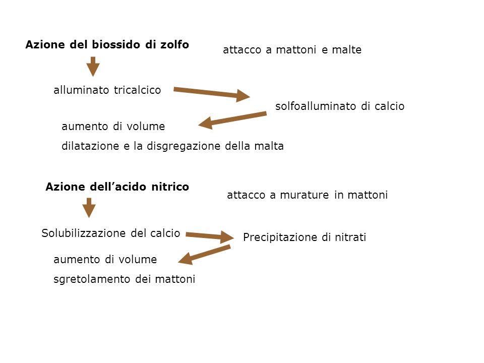 Azione del biossido di zolfo
