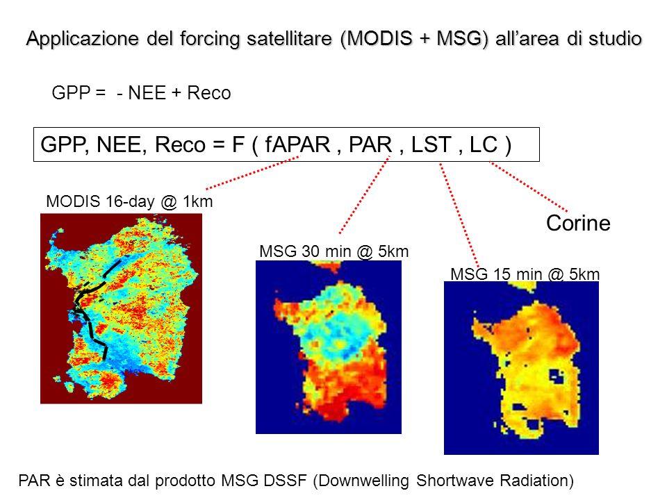 Applicazione del forcing satellitare (MODIS + MSG) all'area di studio
