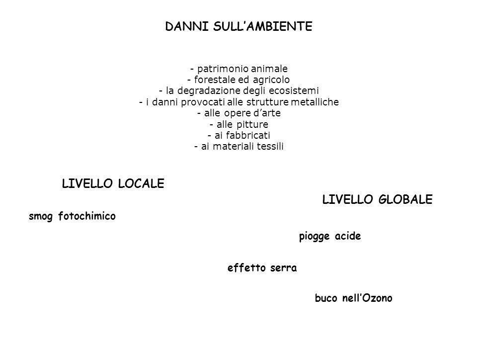 DANNI SULL'AMBIENTE LIVELLO LOCALE LIVELLO GLOBALE