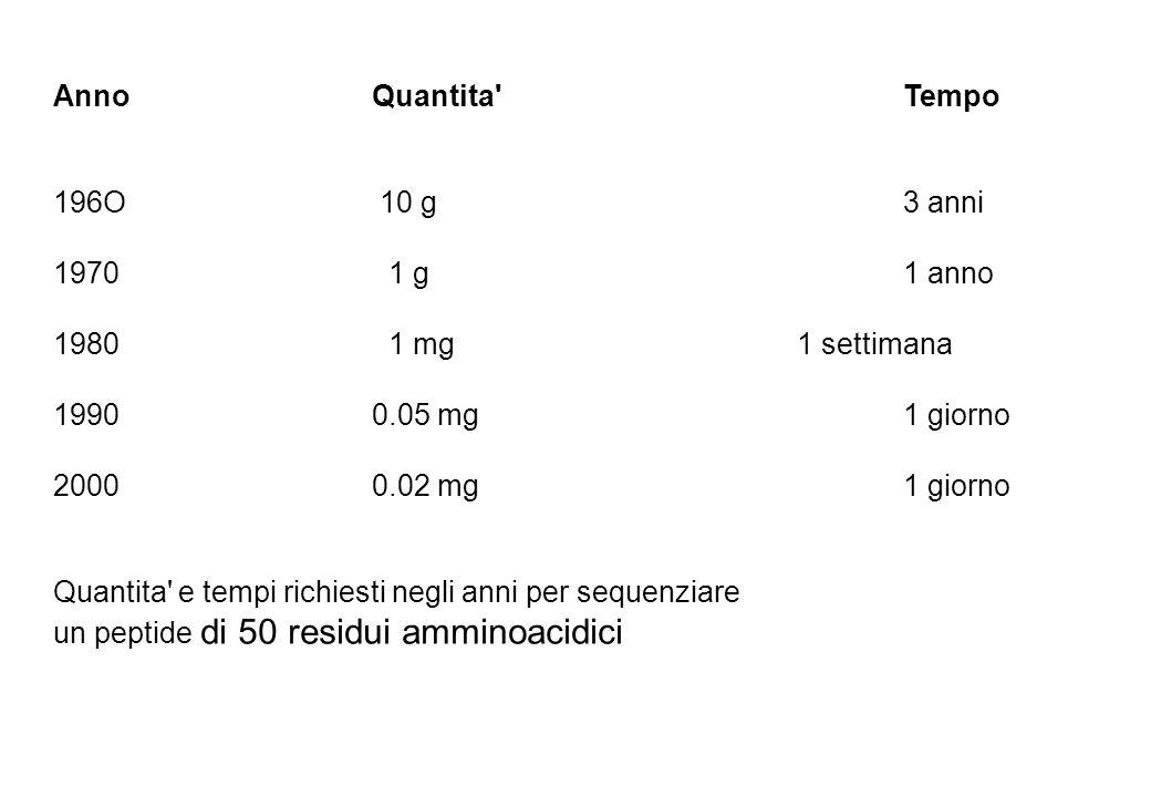 Anno Quantita Tempo 196O 10 g 3 anni. 1970 1 g 1 anno. 1980 1 mg 1 settimana.